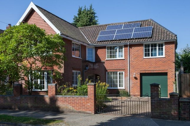 Thumbnail Detached house for sale in Ipswich Road, Norwich