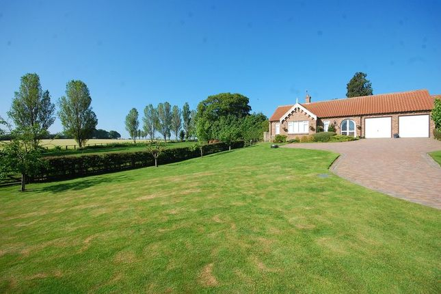 Thumbnail Detached bungalow for sale in West View, Newby Wiske, Northallerton