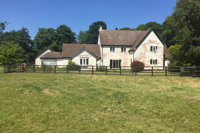 Thumbnail Farmhouse for sale in Cley Lane, Saham Toney, Thetford