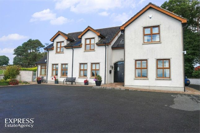 Thumbnail Detached house for sale in Milltown Hill, Warrenpoint, Newry, County Down