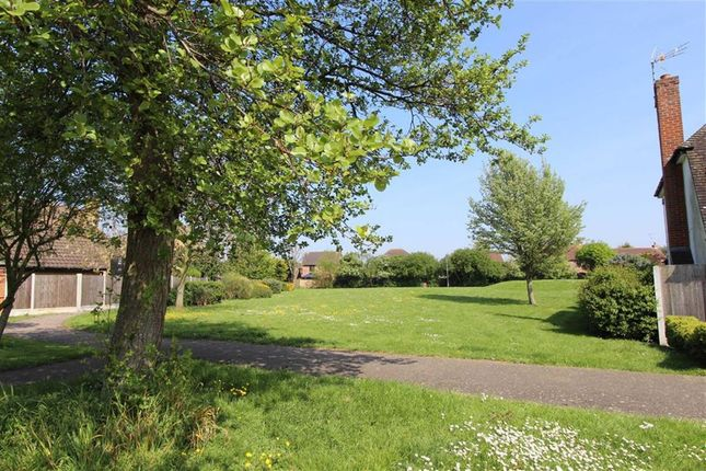 Thumbnail Detached house for sale in Cheldon Barton, Thorpe Bay, Essex