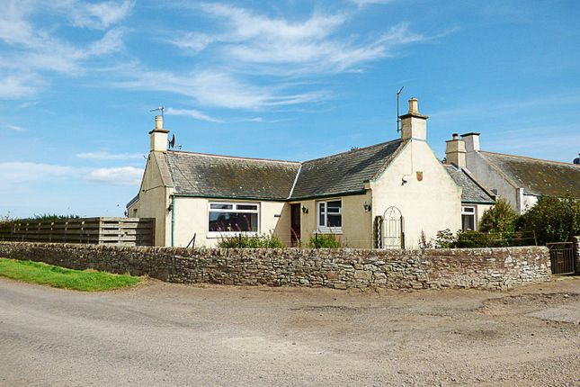 Front View of Dove Cottage, Arbikie, Arbroath, Angus (Forfarshire) DD11