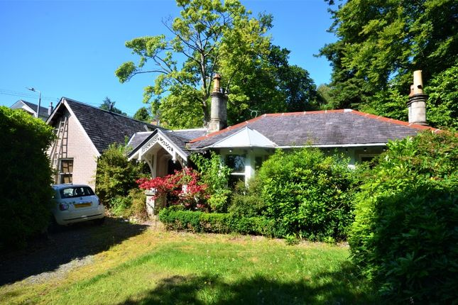 Thumbnail Detached bungalow for sale in Torwoodhill Road, Rhu, Argyll And Bute