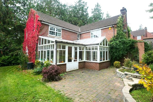 Thumbnail Detached house for sale in Jocelyn Mead, Crediton
