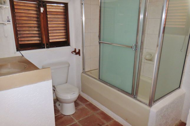 Bathroom Lower Level