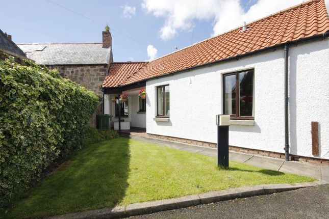 Thumbnail Flat to rent in Court Street, Haddington