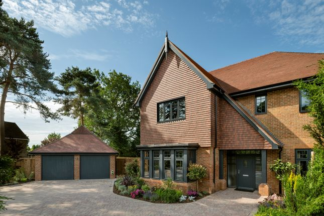 Thumbnail Detached house for sale in Sunte Park, Gander Green, Haywards Heath