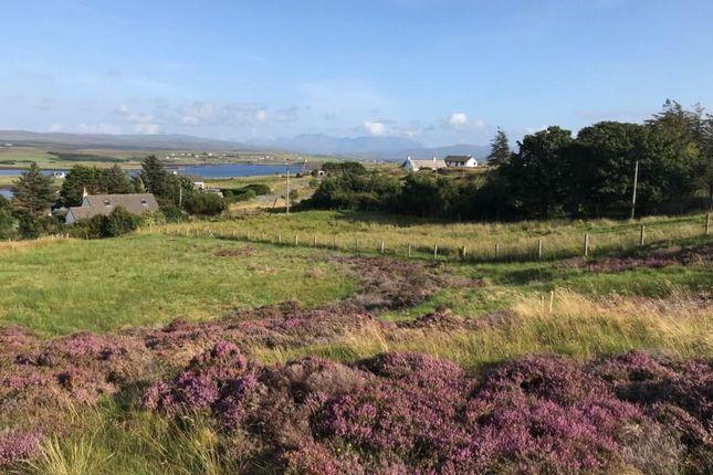 Dunvegan, Isle Of Skye IV55