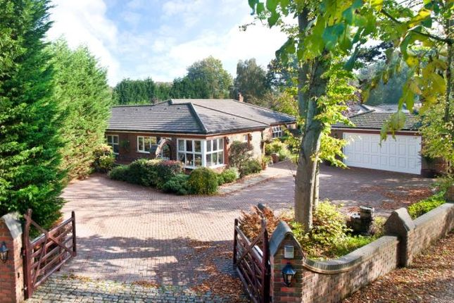 Thumbnail Bungalow for sale in Water Lane, South Godstone, Surrey