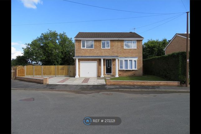 Thumbnail Detached house to rent in Cae Bychan, Flint