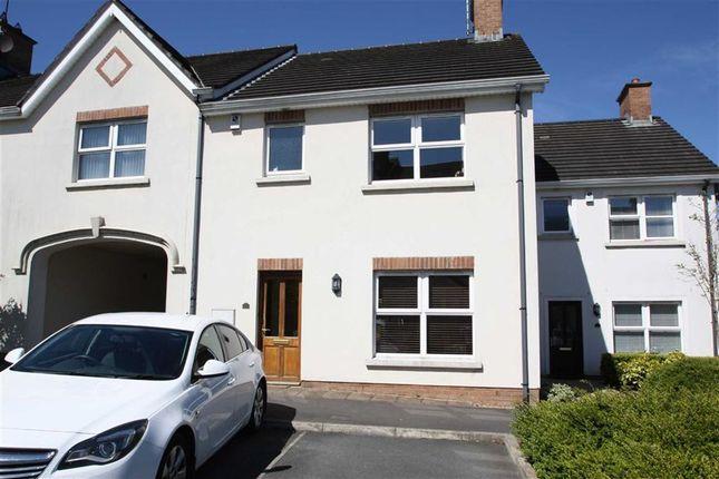 Thumbnail Semi-detached house to rent in Cedar Hill, Ballynahinch, Down