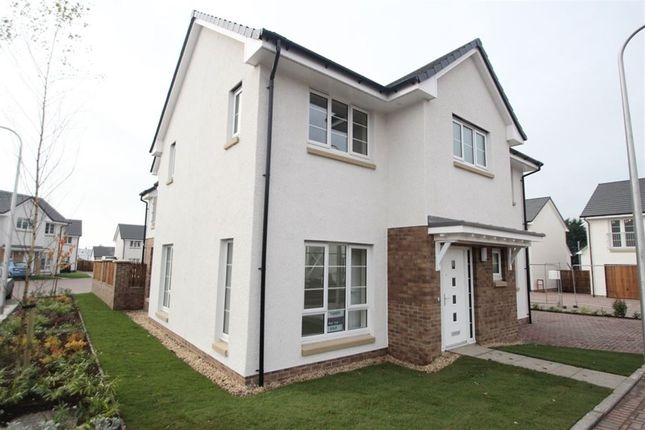 Thumbnail Detached house to rent in Jocelin Avenue, Bishopbriggs