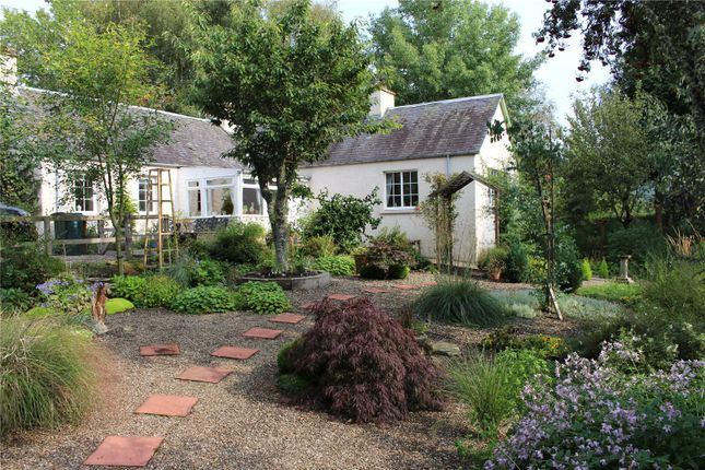 Thumbnail Bungalow for sale in Pitagowan, Blair Atholl, Pitlochry, Perthshire