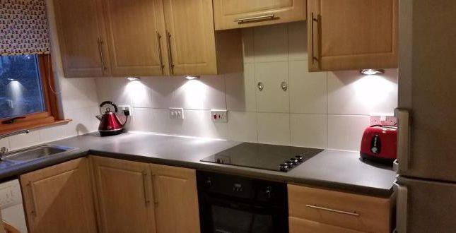 Thumbnail Flat to rent in Gascoigne Court, Falkirk