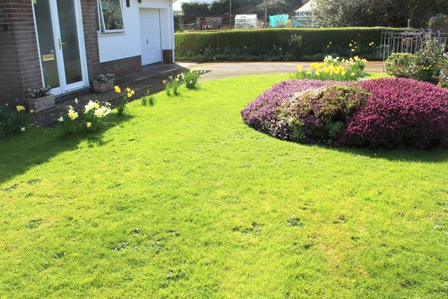 Front Garden of Overton Lane, Overton, Port Eynon, Gower, Swansea SA3