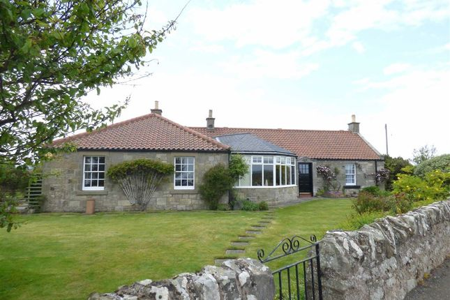 Thumbnail Detached house for sale in East Pitkierie, By Anstruther, Fife