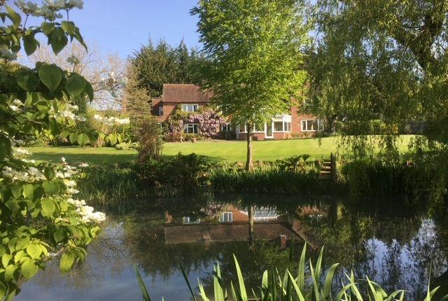 Thumbnail Farmhouse for sale in Ashton, Bishops Waltham