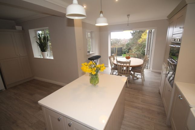Thumbnail Detached house for sale in Ivy Lane, Macclesfield