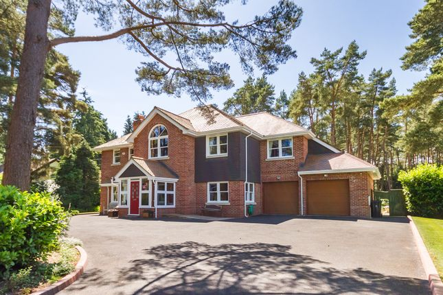 Thumbnail Detached house for sale in Avon Castle, Ringwood, Hampshire