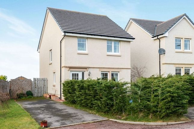 Thumbnail Detached house for sale in Willow Avenue, Culduthel, Inverness