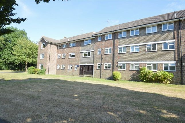Thumbnail Flat to rent in The Mount, Coulsdon