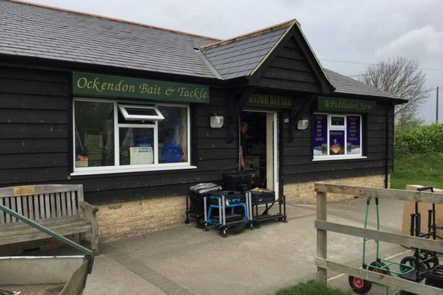 Thumbnail Retail premises for sale in Ockendon Bait And Tackle, Upminster