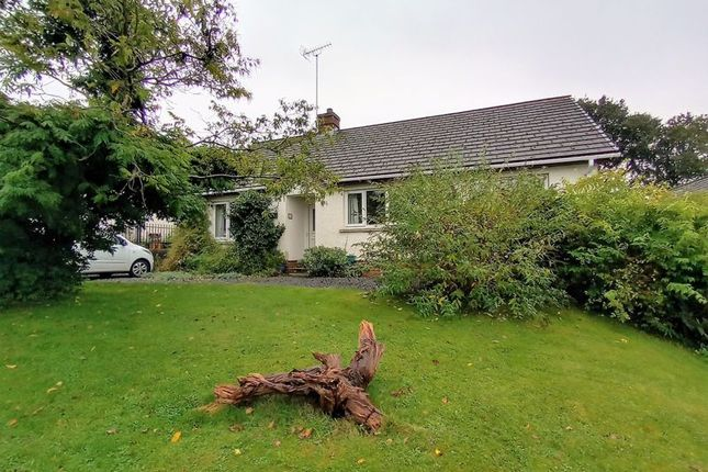 Thumbnail Detached bungalow for sale in Bryn Deri Close, Adpar, Newcastle Emlyn