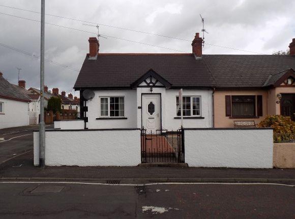 Thumbnail Semi-detached bungalow to rent in Warren Park, Lisburn