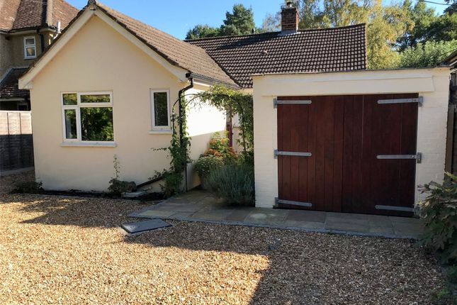 Thumbnail Bungalow to rent in Forest Road, Ascot, Berkshire