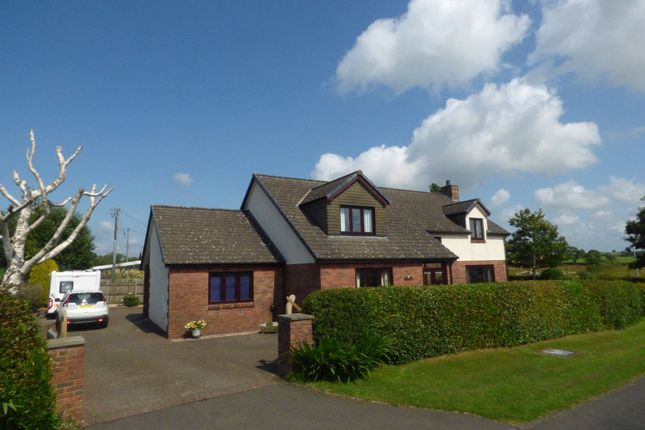 Thumbnail Detached house for sale in Kirkandrews Moat, Longtown, Carlisle