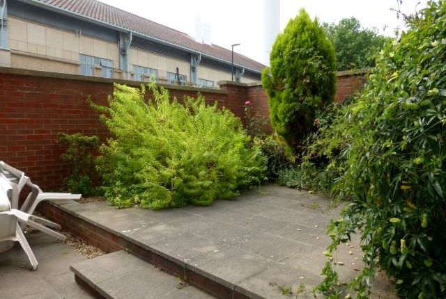 Garden Area of Walker Street, Kingsdown, Bristol BS2
