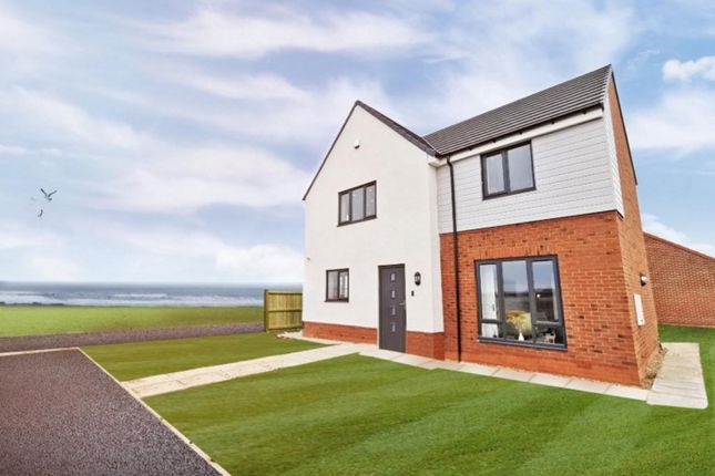 Thumbnail Detached house for sale in Forest Avenue (Plot 109), Hartlepool