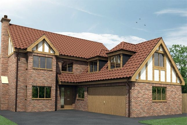 Thumbnail Detached house for sale in Denaby Lane, Old Denaby, Doncaster, South Yorkshire