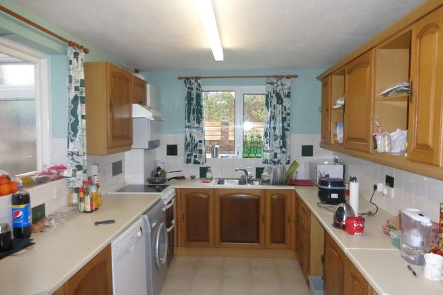 Thumbnail Property to rent in Mount Pleasant Road, Exeter