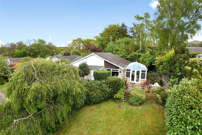 Thumbnail Detached house for sale in Alphington Avenue, Frimley, Camberley, Surrey