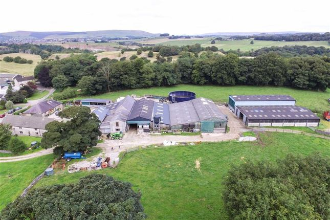 Thumbnail Farm for sale in Cowdale, Buxton, Derbyshire