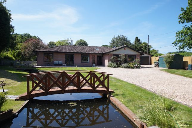Thumbnail Detached bungalow for sale in Wedmans Lane, Rotherwick, Hook