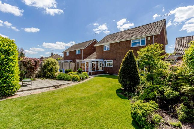 Thumbnail Detached house for sale in Whitsands Road, Swaffham
