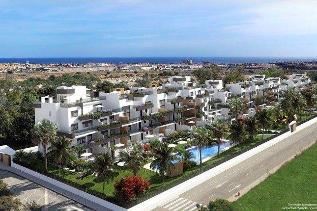 Calle Puerto, 03189, Alicante, Spain