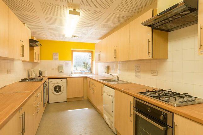 Thumbnail Flat to rent in Grimwade Street, Ipswich