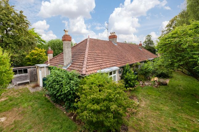 Thumbnail Detached bungalow for sale in Wilberforce Road, Cambridge