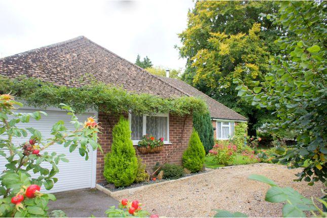 Thumbnail Detached bungalow for sale in Cargate Avenue, Aldershot