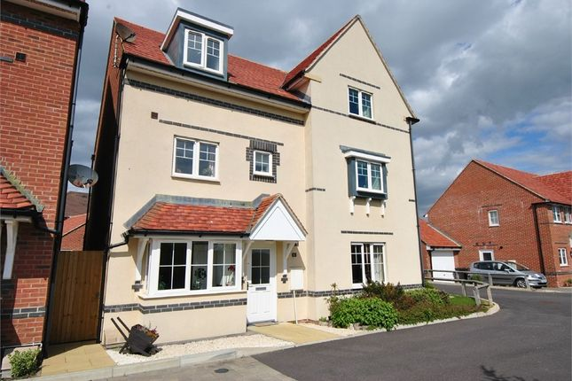 Thumbnail Semi-detached house for sale in Northcliffe, Bexhill-On-Sea, East Sussex