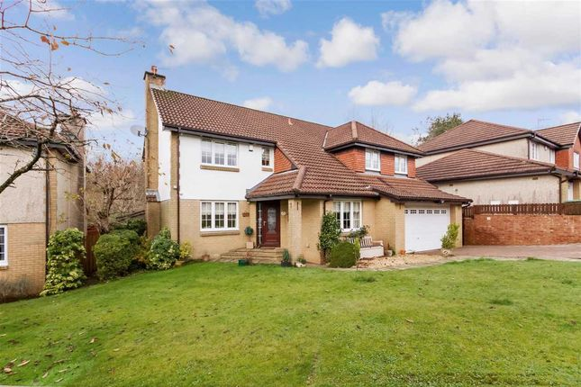 Thumbnail Detached house for sale in Macnicol Place, Stewartfield, East Kilbride