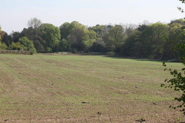 Thumbnail Land for sale in Scarborough Road, Driffield