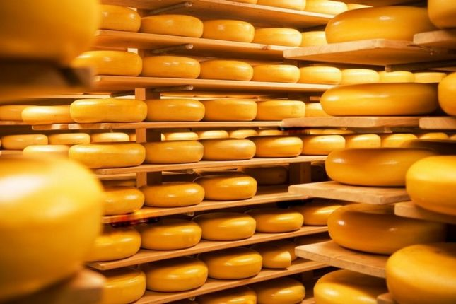 Thumbnail Industrial for sale in Cheese Industry, Seia, Guarda, Central Portugal