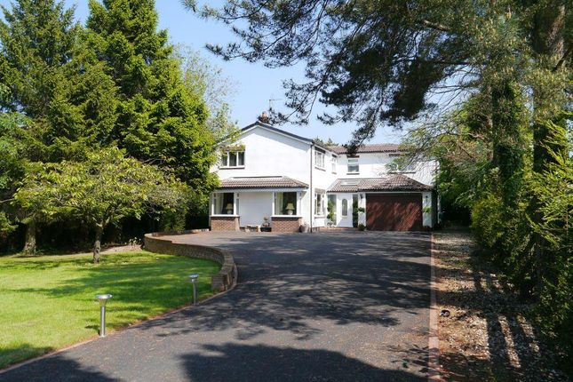 Thumbnail Detached house for sale in Eastern Way, Ponteland, Newcastle Upon Tyne