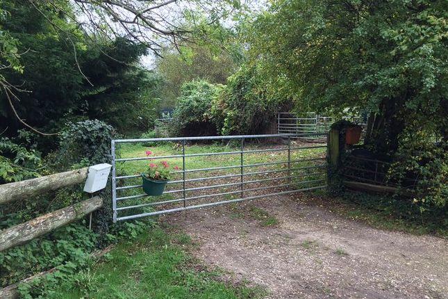 Thumbnail Land for sale in Newbridge, Cadnam, Southampton