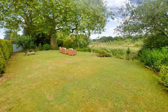 Garden of Rewe Court, Rewe, Exeter, Devon EX5