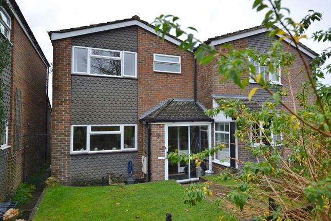 Thumbnail Semi-detached house to rent in Rosemary Close, Petworth